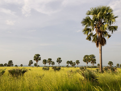 QENP, Uganda